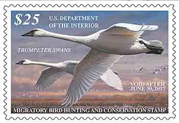 duck-stamps-on-sale